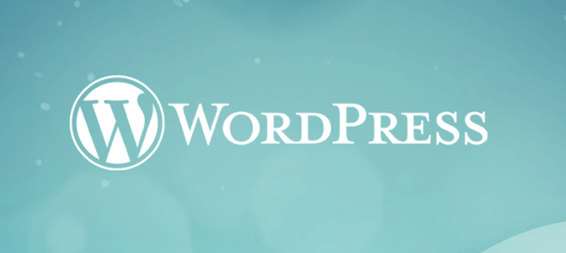 What does a server need to have to host WordPress website?