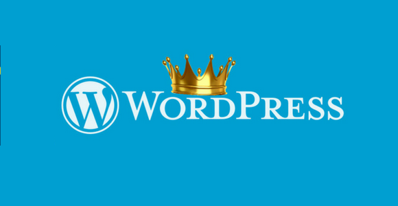 Using WordPress: 7 reasons why WordPress is still the King