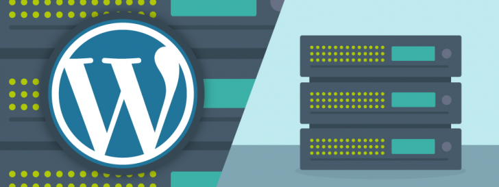 WordPress Hosting or Shared Hosting: Which one to choose?