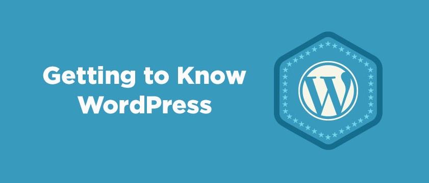 CMS Aimed at Success – WordPress Versions History!
